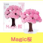 マジック桜広告画像